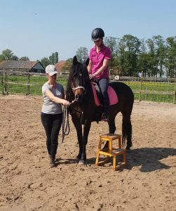 Funride Equidream Instructie